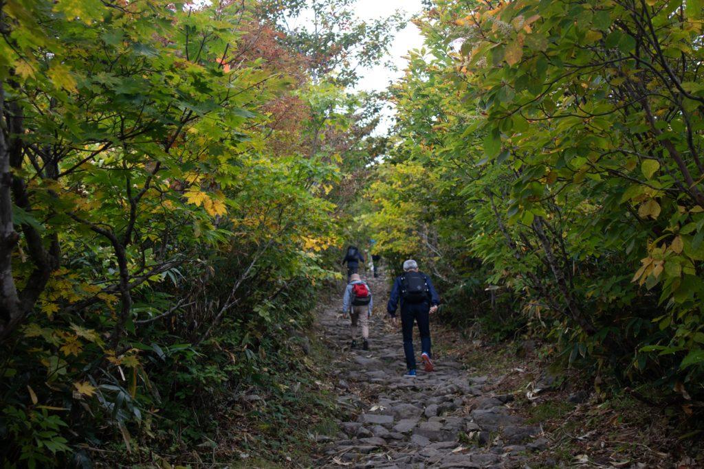 栗駒山いわかがみ平からの登山道