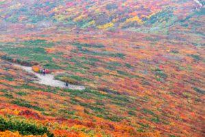 紅葉の栗駒山登山の写真(いわかがみ平から中央ルート)