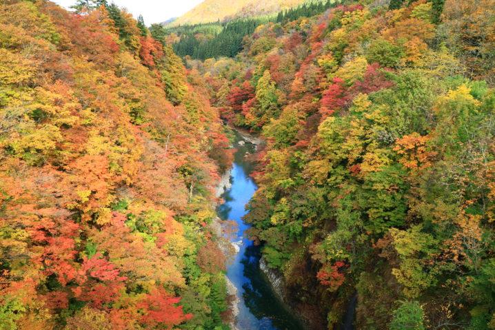 秋田県湯沢市小安峡の紅葉