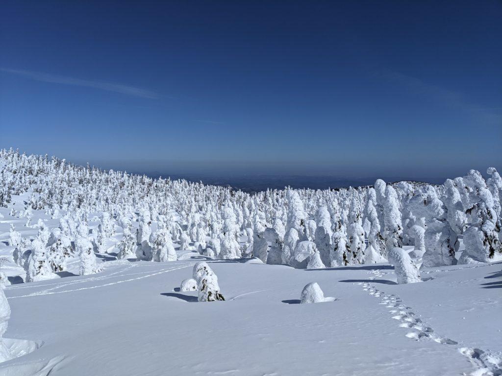 山形蔵王の樹氷高原の景色