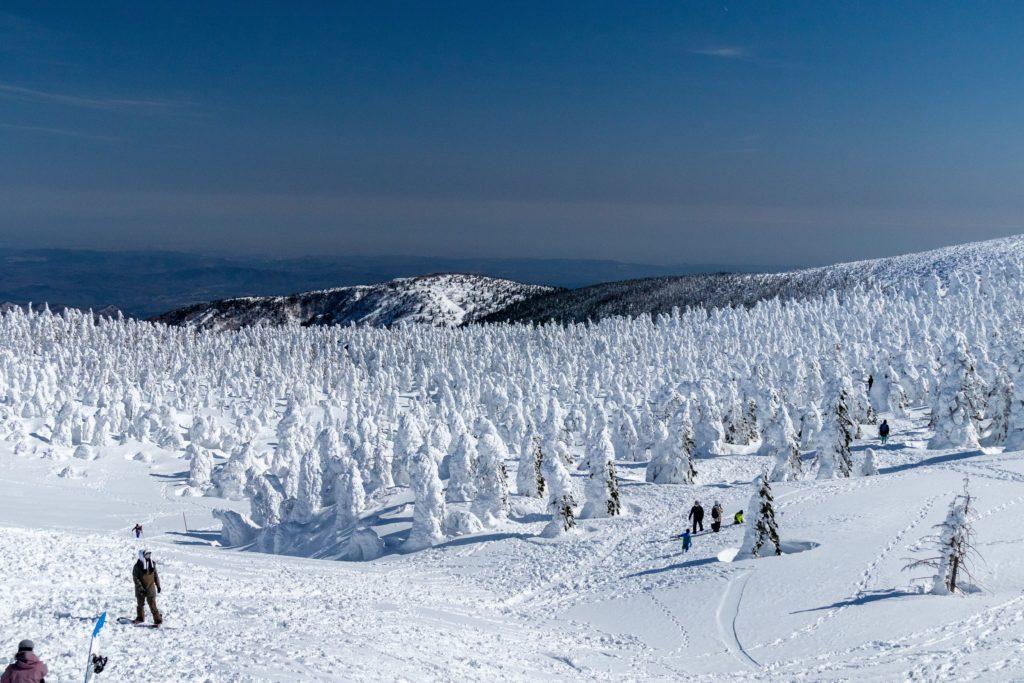 山形蔵王樹氷のおすすめの景色