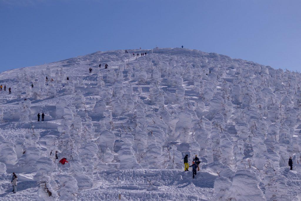 山形の樹氷の景色