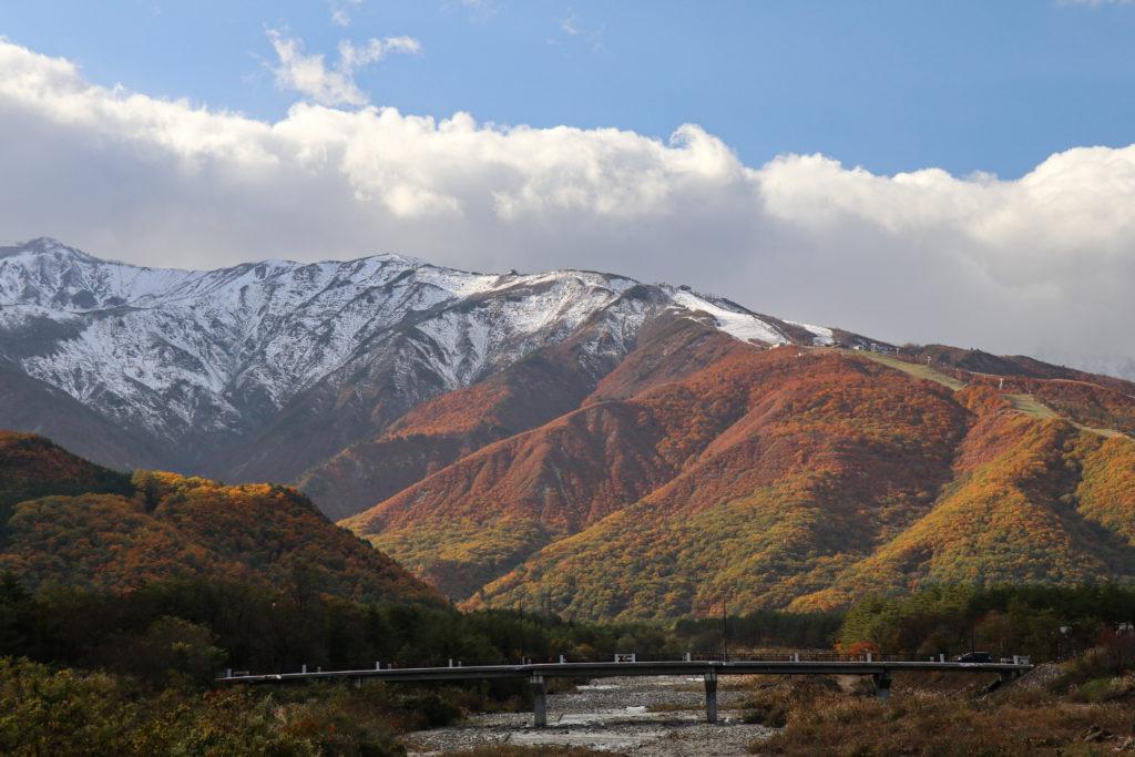 秋の白馬の三段紅葉の写真