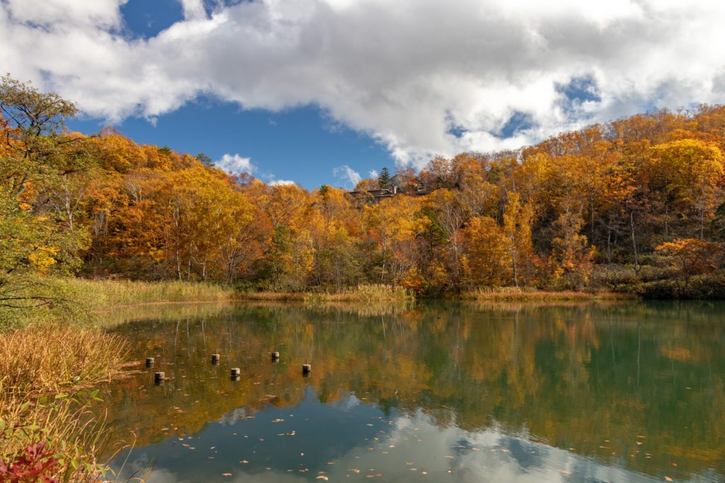 志賀高原の琵琶池の紅葉ーリフレクションがきれいー