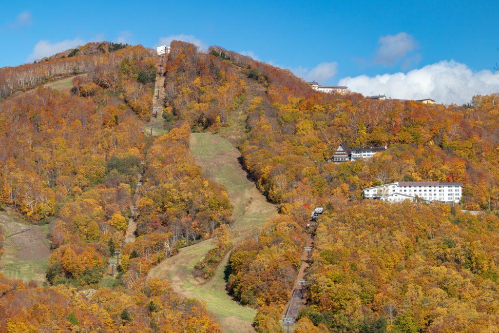 志賀高原蓮池裏から見たスキー場の紅葉